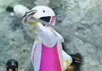 Pink Ranger switches sword hands
