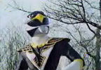 Black Ranger looks up