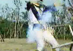 Black Ranger beaten